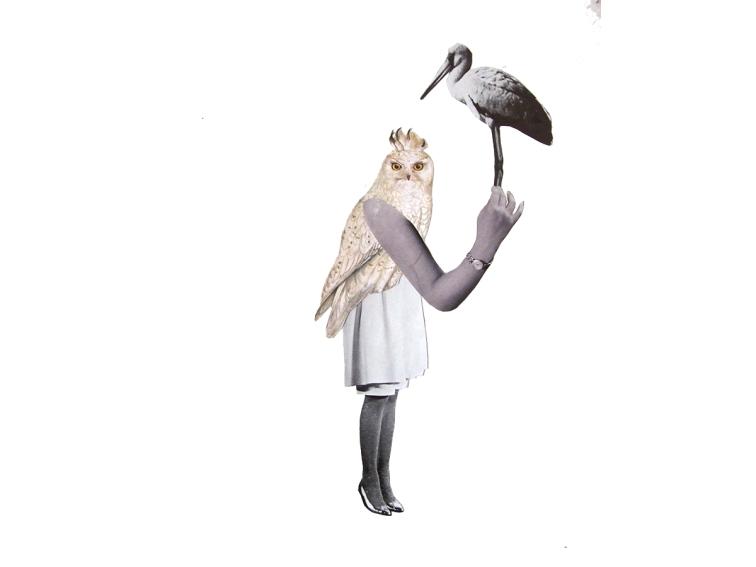 ms-owllady