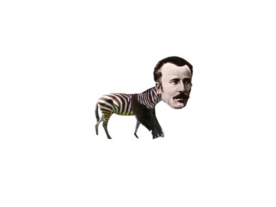 ms-zebraman