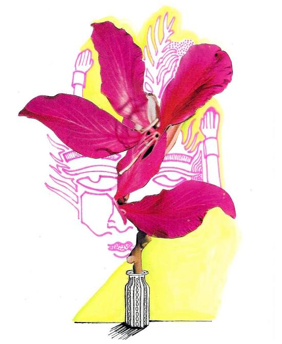 fleur-de-la-couronne