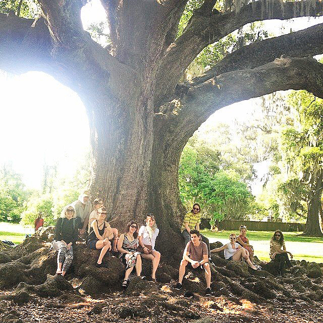 tree-o-life-nola